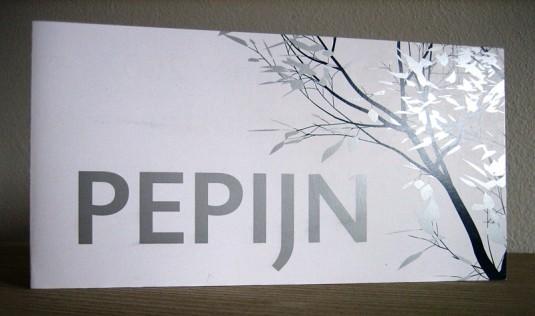 Voorkant Geboortekaartje Pepijn